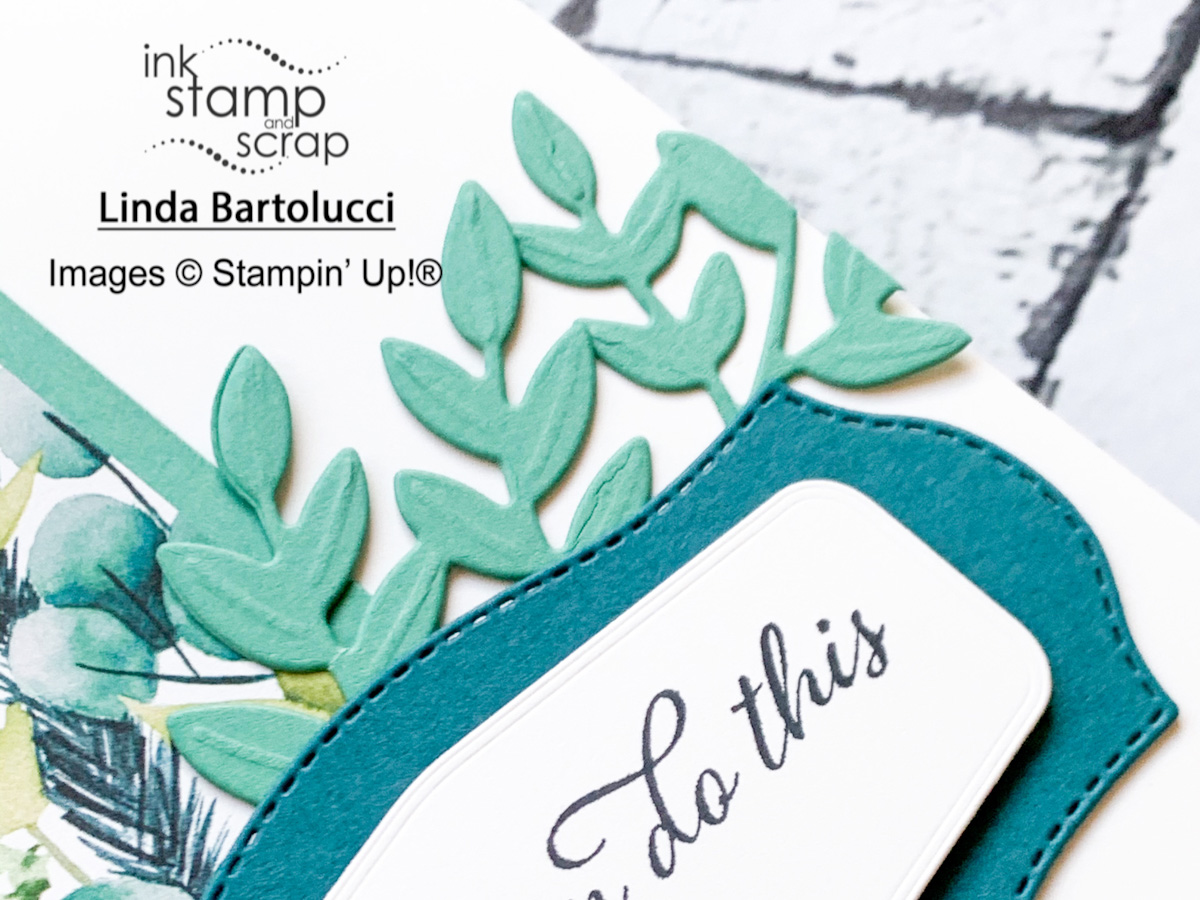 Stamp and Share!  Facebook Live Recap